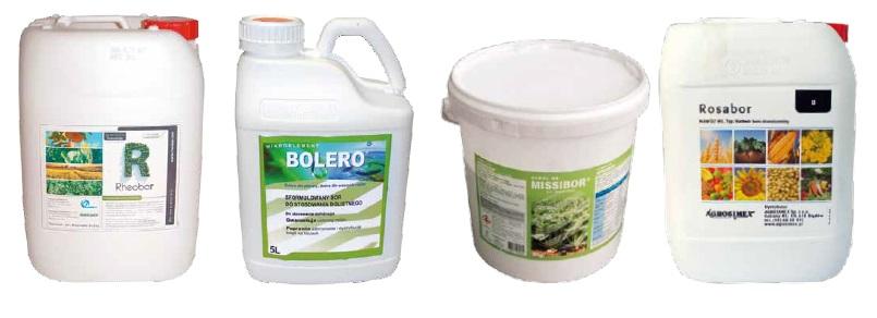 Rhoebor / Bolero / Missibor / Rosabor