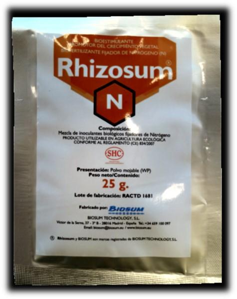 rhizosum