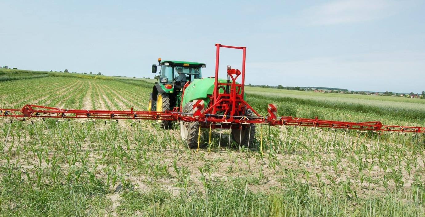 nawożenie kukurydzy makro i mikroelementami