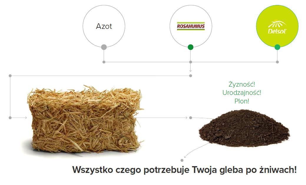 mineralizacja resztek pożniwnych + resztki pożniwne +słoma