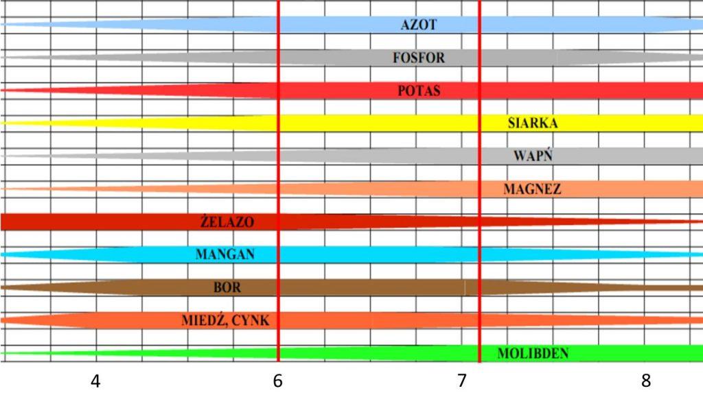 Analizy gleby - przyswajalność składników