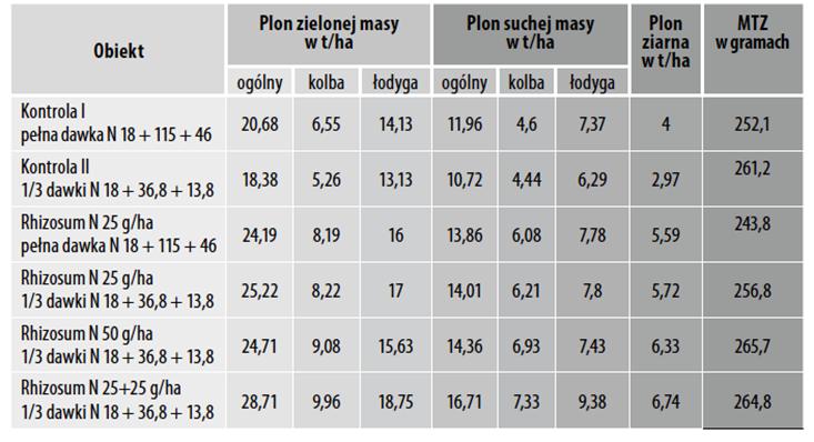 Wpływ stosowania preparatu Rhizosum N na plonowanie kukurydzy LG 30.220. IUNG RZD Grabów, 2015 rok