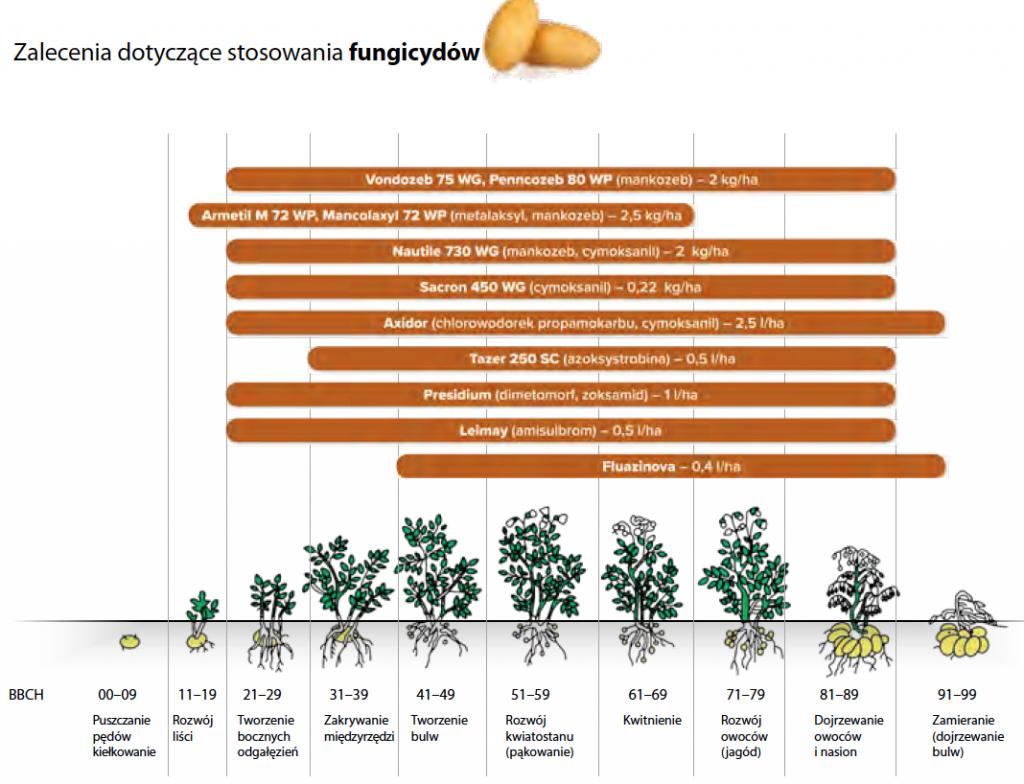 Zalecenia dot. stosowania fungicydów w uprawach ziemniaków