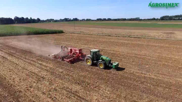 BELEM 0,8 MG do ochrony upraw przed szkodnikami w glebie