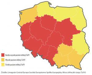 Mapa – występowanie żółtaczki rzepy